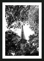 Metal Leaves  Impression et Cadre photo