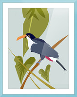 Toucanish Picture Frame print
