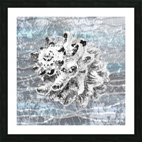 Silver Gray Seashell On Ocean Shore Waves And Rocks VI Picture Frame print