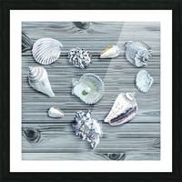 Silver Gray Seashells Heart On Ocean Shore Wooden Deck Beach House Art  Picture Frame print