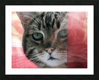 malou01 Picture Frame print