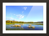 Beautiful Day at the Estuary 2 Picture Frame print