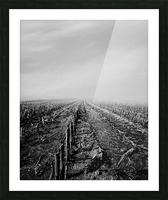 After The Harvest Picture Frame print