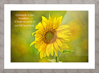 Gratitude is Like Sunshine Picture Frame print