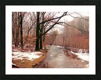 Park Path  Picture Frame print