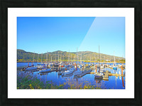 Perfect Day at Hood River Marina   Oregon Picture Frame print