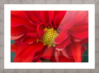 Red and Yellow Picture Frame print