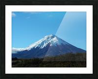 4AC2DAA8 F088 42F8 984A F2C96F02A281 Picture Frame print