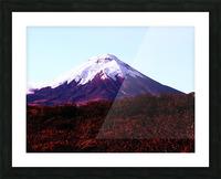E5551BA9 0D0A 4BCE A22F 7C1BCD9EFC16 Picture Frame print