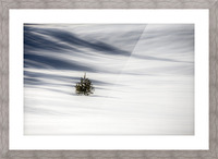 Solitude Picture Frame print