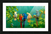 Birds Of Paradise  Picture Frame print