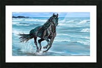 Black Beauty  Picture Frame print