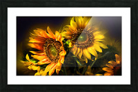 Little Suns Picture Frame print