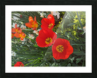 The Flower Family Picture Frame print