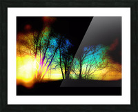 Evening tree Picture Frame print