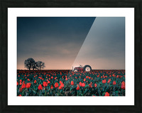 Tractors & Tulips Picture Frame print