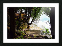 Enchanted Embankment Picture Frame print