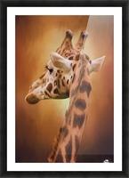 Rising Above - Giraffe Art Picture Frame print