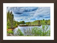 Carte postale Picture Frame print
