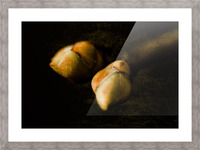 Buds Picture Frame print
