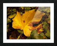 BEF07FDB 2FCF 424A 8A1F 5DBA1711F3B9 Picture Frame print
