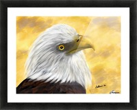 Proud Eagle Picture Frame print
