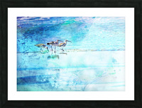 Three Whimbrels Picture Frame print