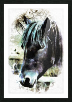 Horse Spirit Guide Picture Frame print