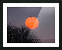 Sunrise lever de soleil Picture Frame print