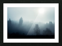 Sunrise in the misty forest Picture Frame print