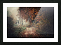 Foggy autumn forest Picture Frame print