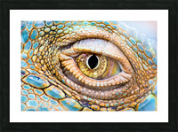 Eye of the dragon Picture Frame print