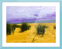 Dunes at Cape May Picture Frame print