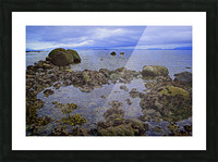 Tranquility at Low Tide Picture Frame print