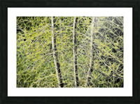 Simulated Saplings Picture Frame print