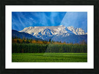 Comox Glacier in Early Spring Picture Frame print