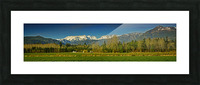 Comox Glacier Panorama Picture Frame print