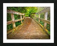 Bridge in the Sanctuary Picture Frame print