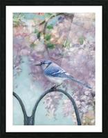 Garden bird Picture Frame print