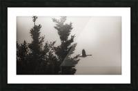 Morning Fog Picture Frame print