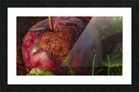 La pomme tatouee - The tattooed apple Impression et Cadre photo