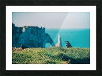 Photobook 8167 Picture Frame print