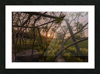 Un lieu pour mediter - A place to meditate Picture Frame print