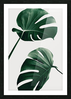 Monstera Natural 46 Picture Frame print