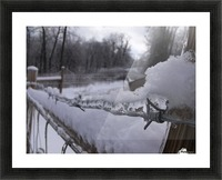 16864_738586360532_4294197_n Picture Frame print