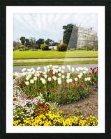 Botanic Garden II Picture Frame print