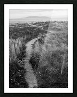 Path to the Sea Picture Frame print