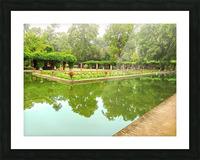 Lotos Pond - Estanque de Los Lotos - Parque de Maria Luisa - Seville Spain Picture Frame print