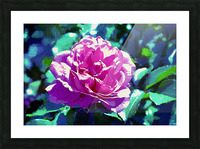 Pink Rose Picture Frame print