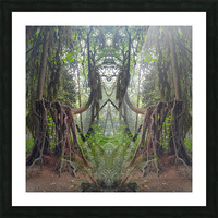 Grandmother Tree Picture Frame print